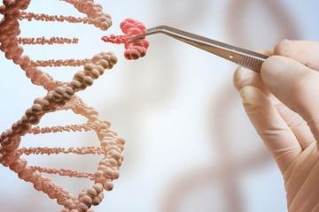 Dlaczego zabiegi EstGen są tak skuteczne? Inżynieria tkankowa w kosmetologii